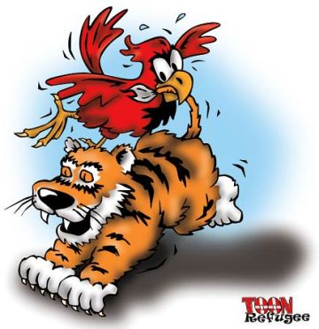 cards-tigers